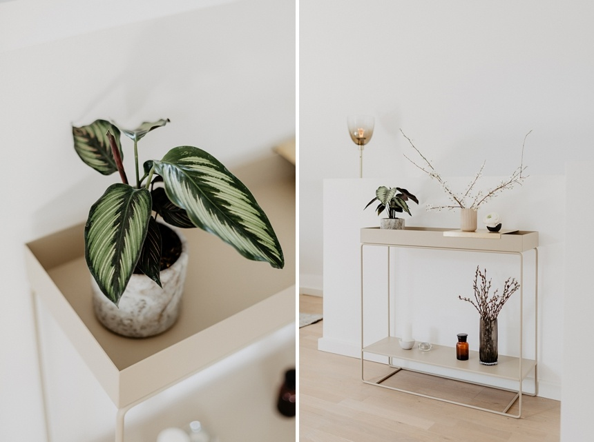 Plant Box Two-Tier von ferm LIVING, Farbe Cashmere by Wiener Wohnsinn
